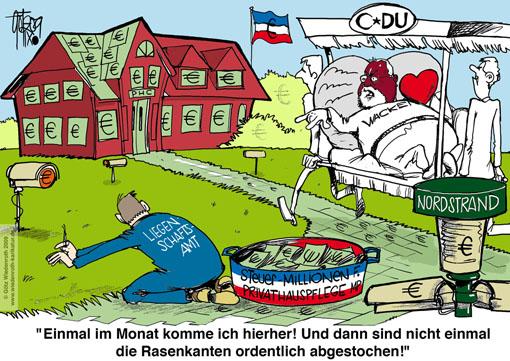 Liegenschaftsamt verquickung dienst privat wiedenroth karikatur